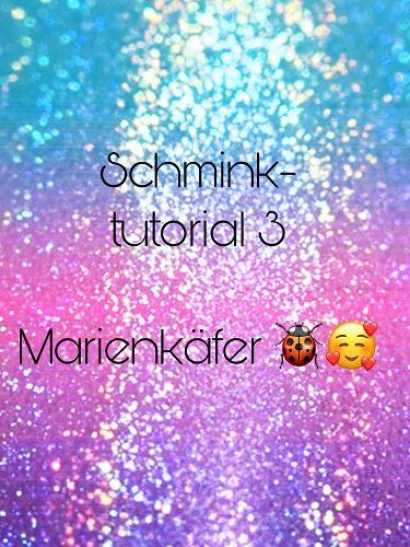 Marienkäfer 0